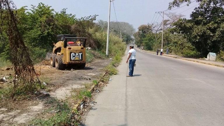Reproducen15 mil isoras para vivero municipal de tuxtepec for Viveros en oaxaca